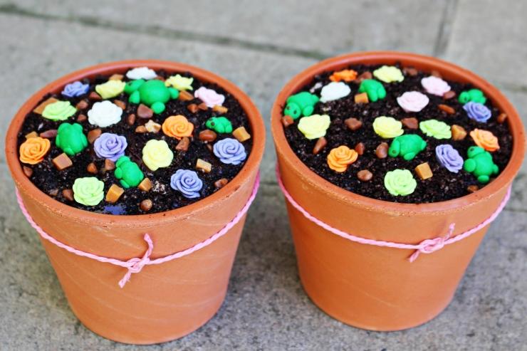 Pots 1 - 2